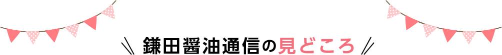 鎌田醤油通信の見どころ