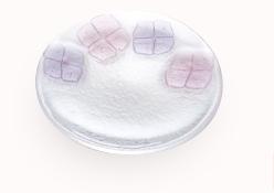 丸中皿(パープル&ピンク)