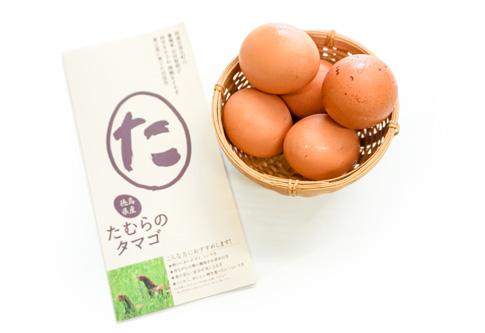 私たちが食べてたTKGで使っている卵について