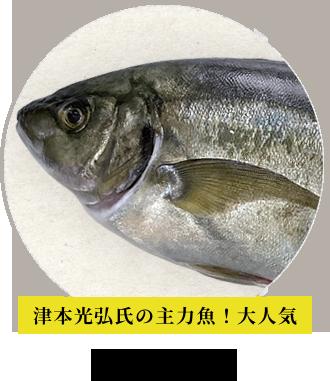 津本光弘氏の主力魚!大人気 シマアジ
