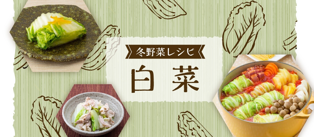 冬野菜レシピ 白菜特集